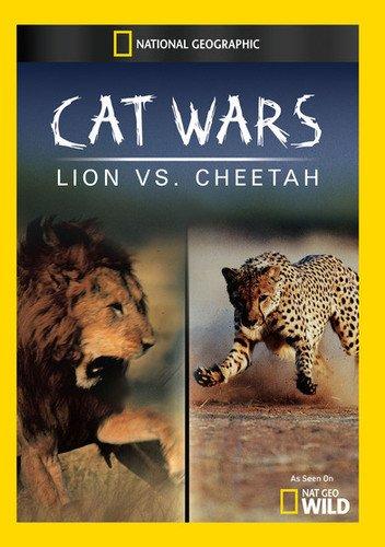 Cheetahs VS Lions.jpg
