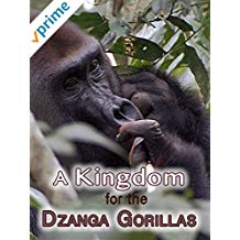 A Kingdom for the Dzanga Gorillas.jpg