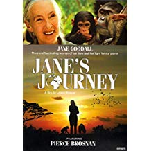 Janes Journey.jpg