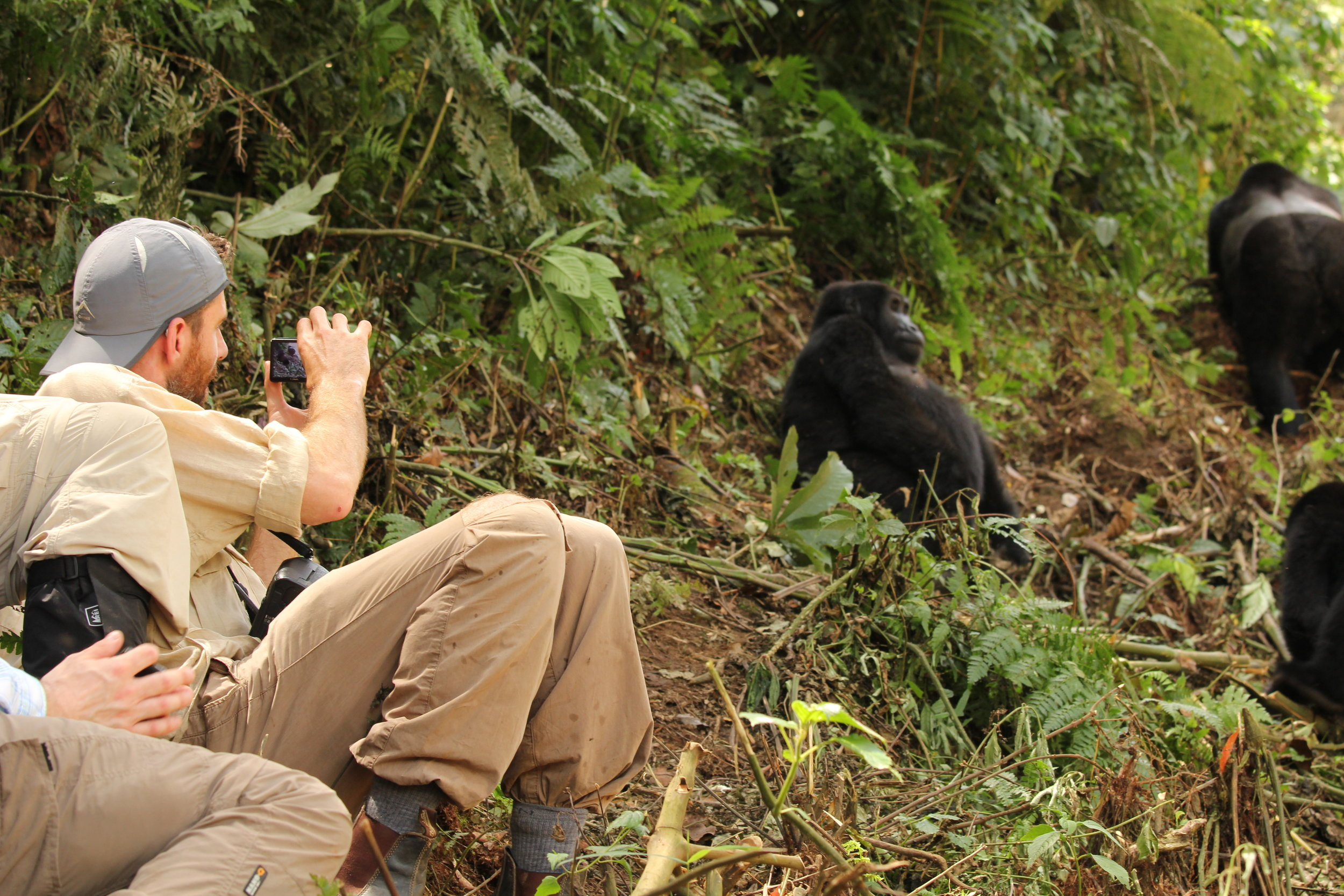 Nkuringo Gorilla trek_lyndsay harshman photo.JPG