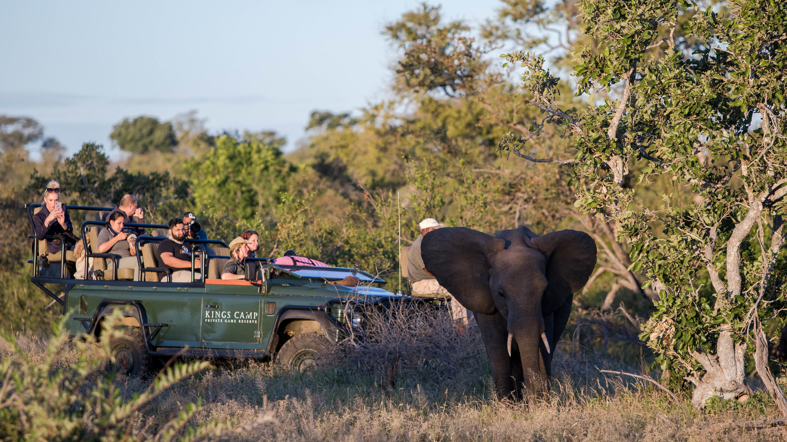 Game Drive - When you are in the safari vehicle exploring the wilderness in search of wildlife and birds. Usually a 3 hour drive, twice a day, however, this can vary.