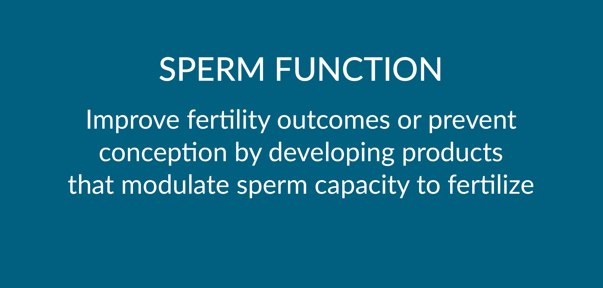 SpermFunction.jpg
