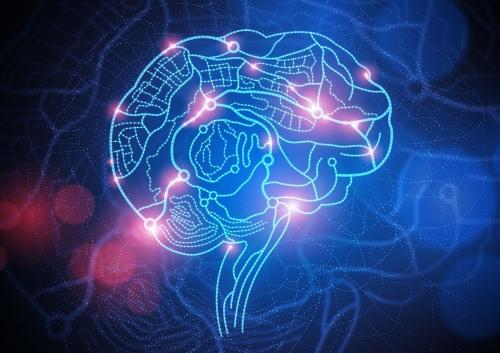 Brainb.jpg