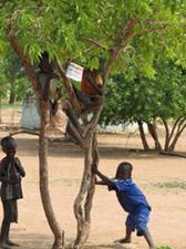 bbm_sudan05.jpg