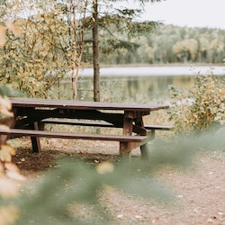 Beautiful park bench chat -