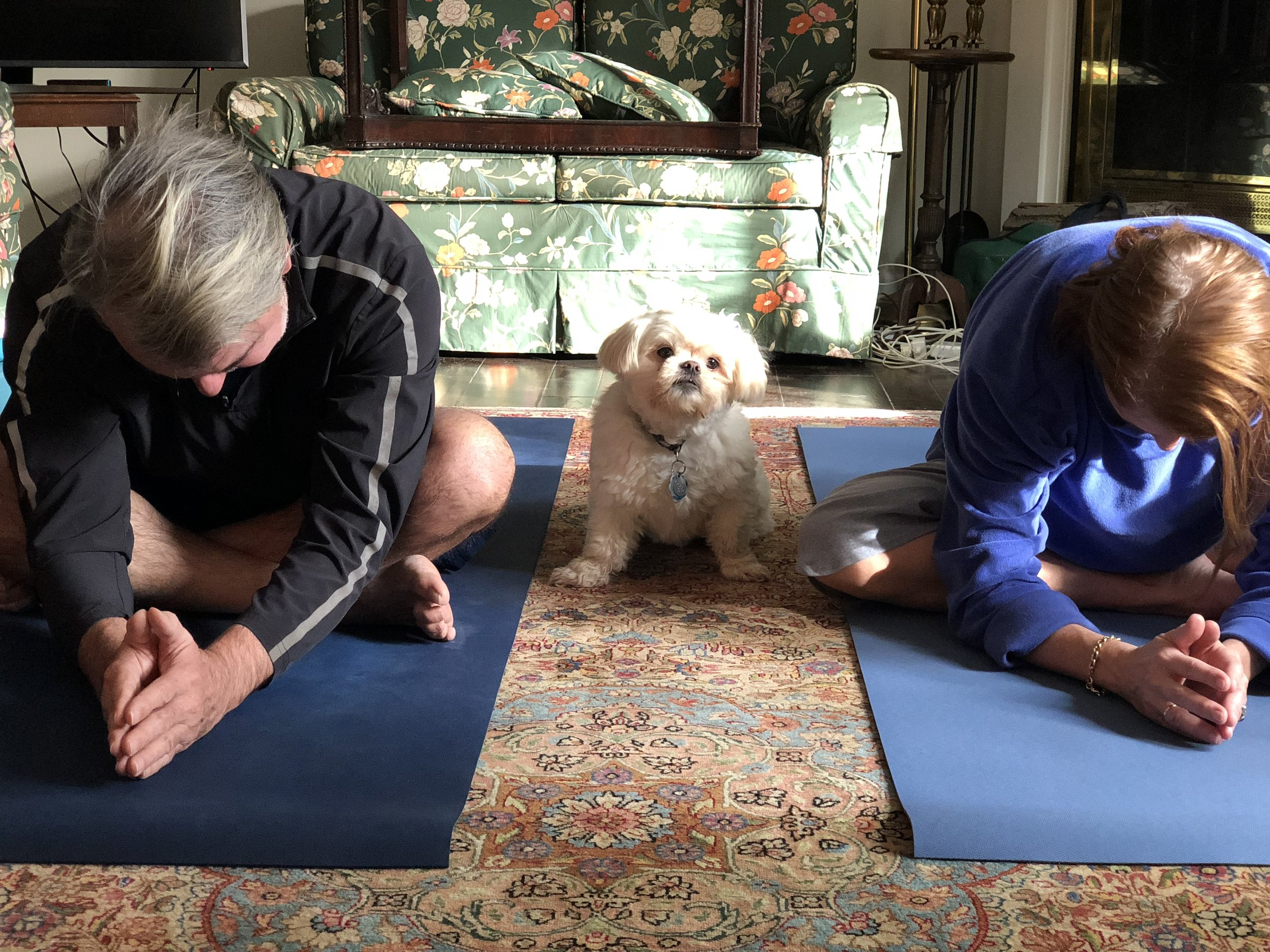Toby practicing with Nicholas and Katie. Is that Upward dog?