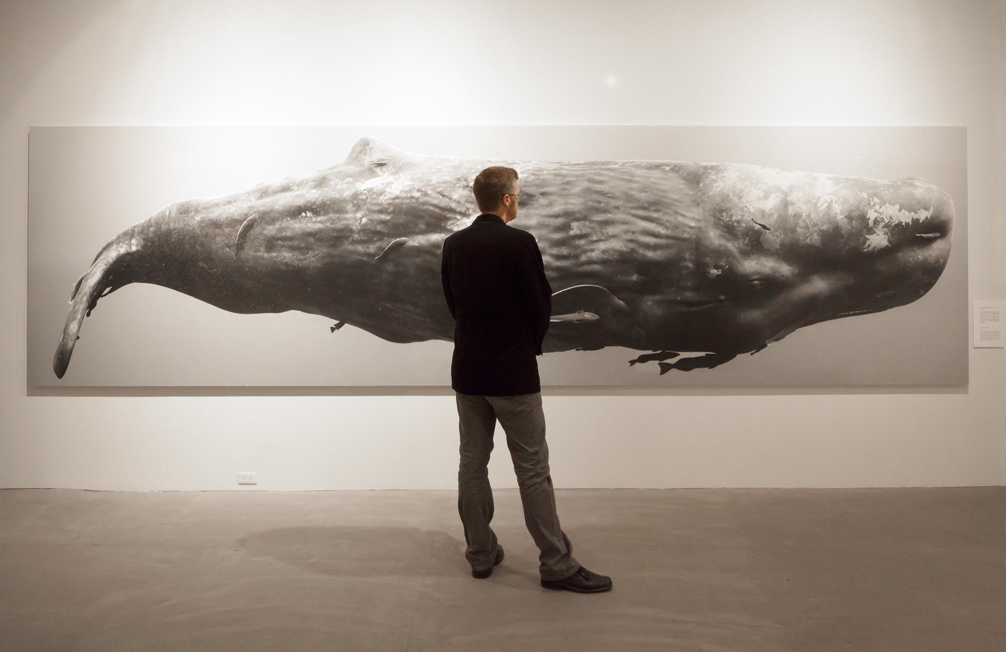 Sperm Whale Composite I
