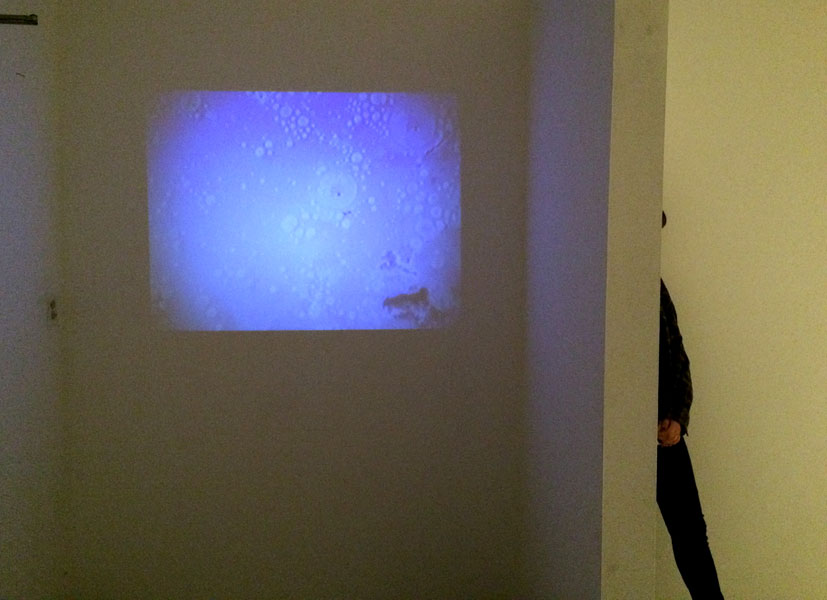 No Innocent Bystanders. Dimensions Variable. Porcelain Forms, Video Projection, Audio. (2014)