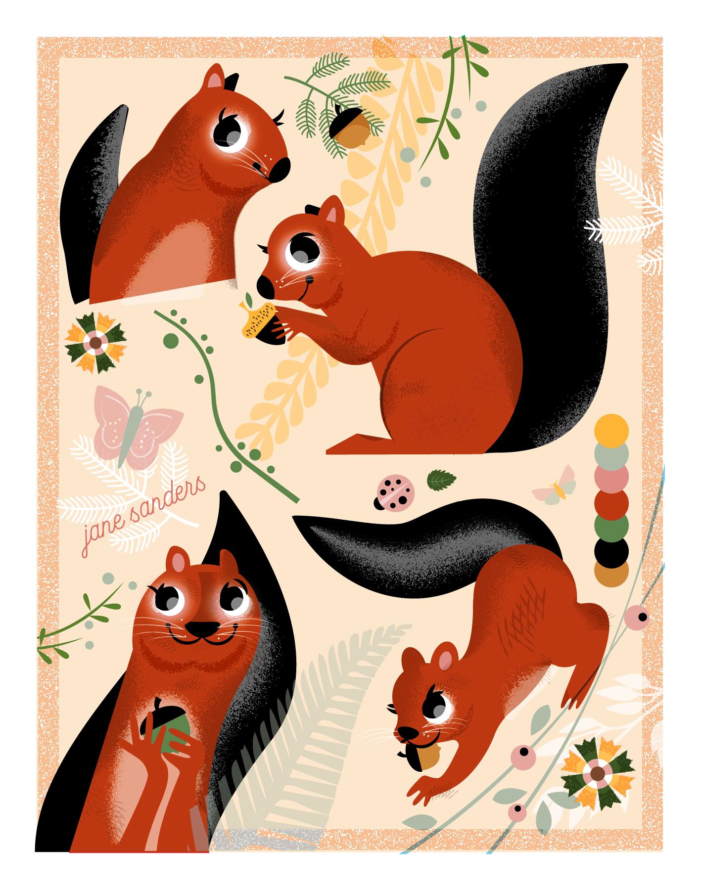 Squirrel Heads