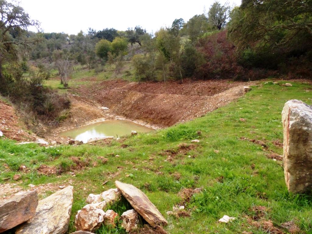 der neue Retentionsteich: Regenwasser sammeln , Grundwasser anreichern, Erosion stoppen Februar 2018
