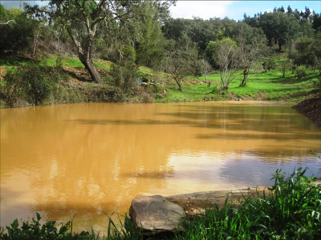 der gleiche Teich nach 3 Regentagen, April 2018