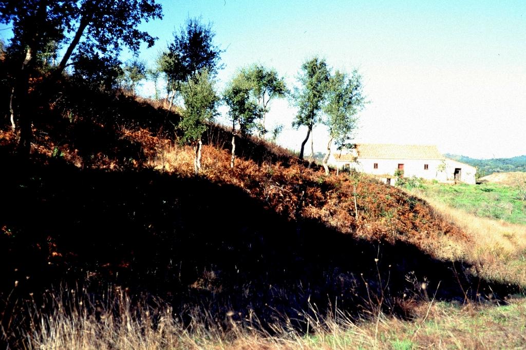 A1 Retumbana 1996.jpg