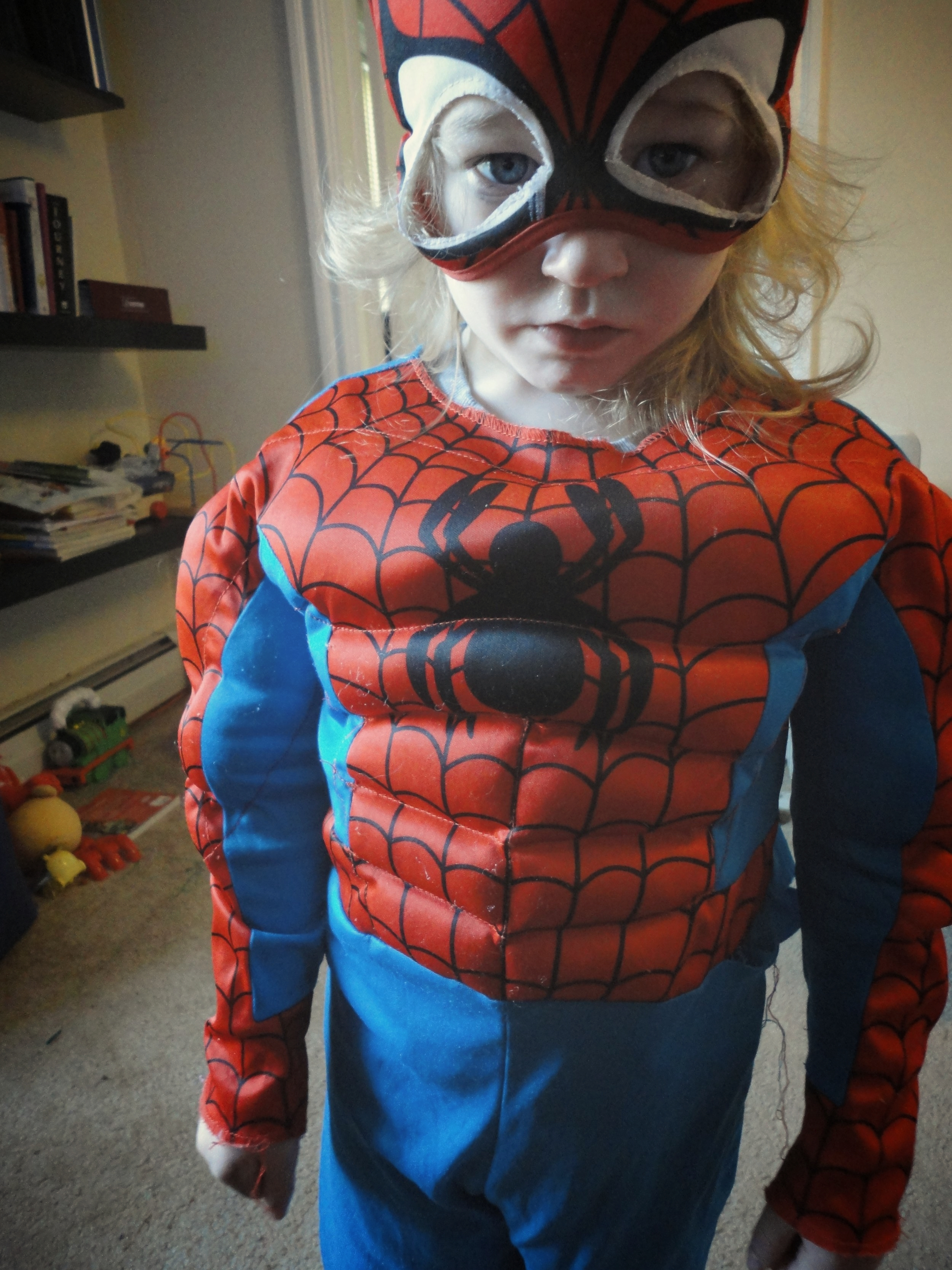 Monkey Boy in his first Spider-Man costume. He lived in that costume until it became to small and we lost the mask. He took a different mask to school. We've had three or four Spider-Man masks. We still have Captain America, Iron Man, two Power Ranger masks, Darth Vader, Kylo Ren, and Batman. Of course you need a Batman.