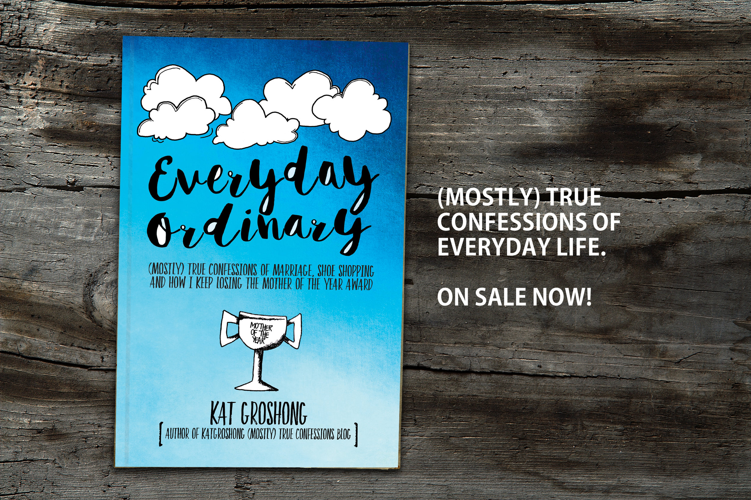 Everyday Ordinary promo_cover page.jpg