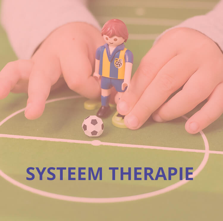 systeemtherapie_slider.jpg
