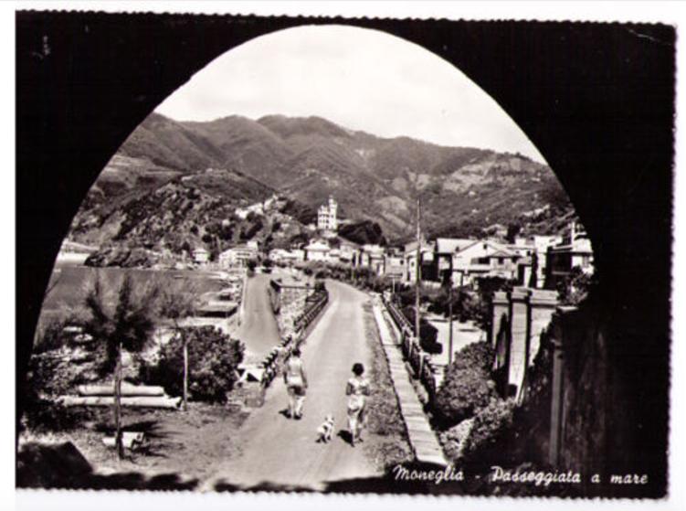 old Moneglia postcard