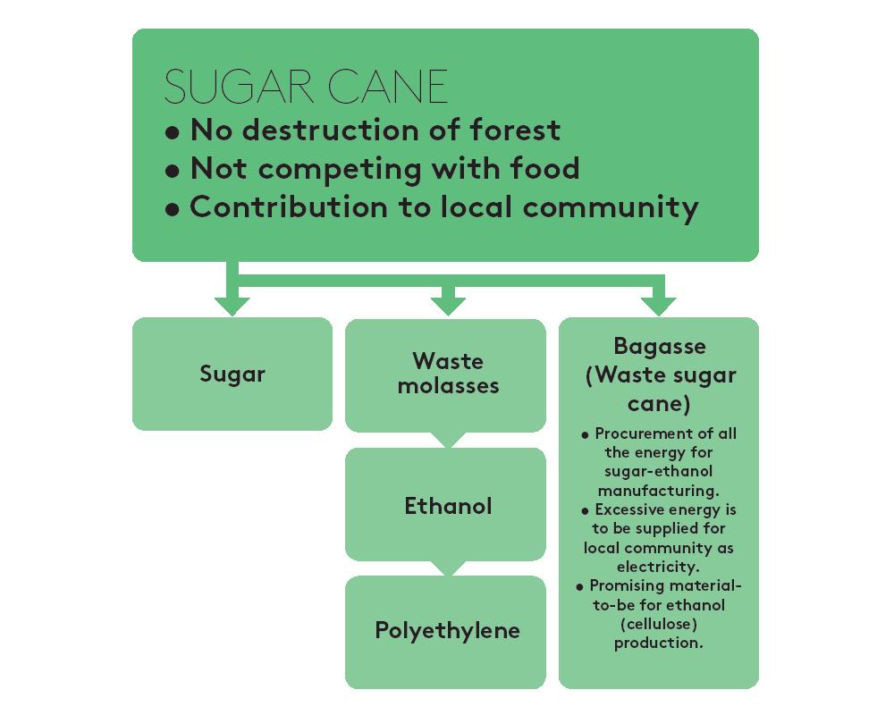 sugarcane-flow2.png