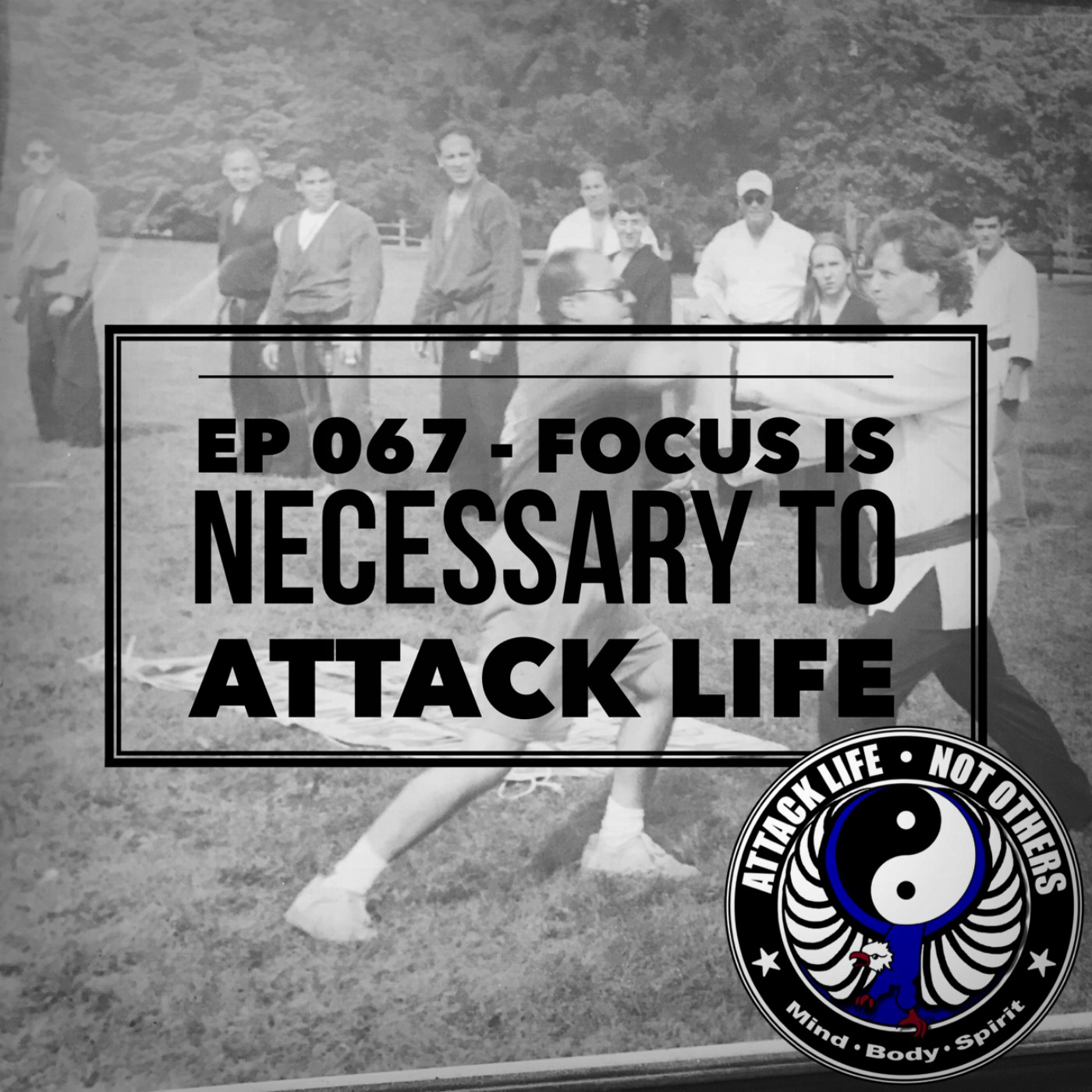 Ep 067 - Focus is Necessary to Attack Life