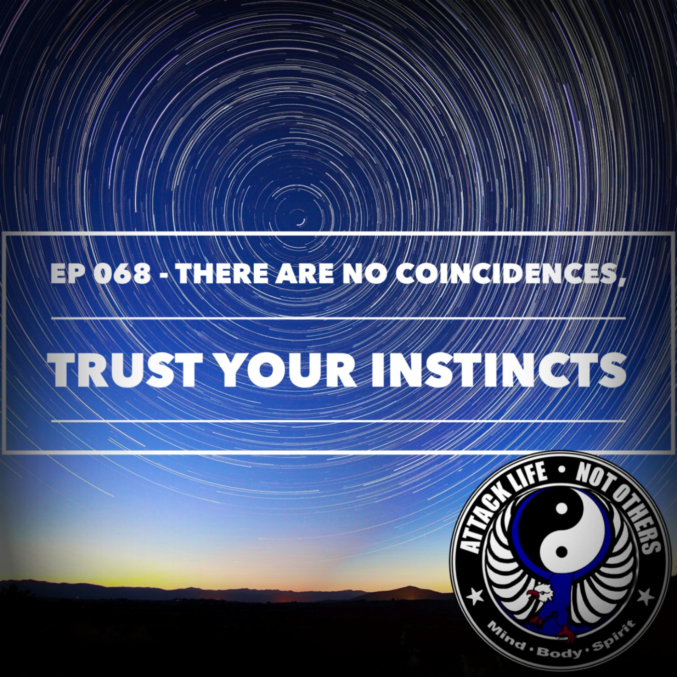 Ep 068 - There Are No Coincidences, Trust Your Instincts