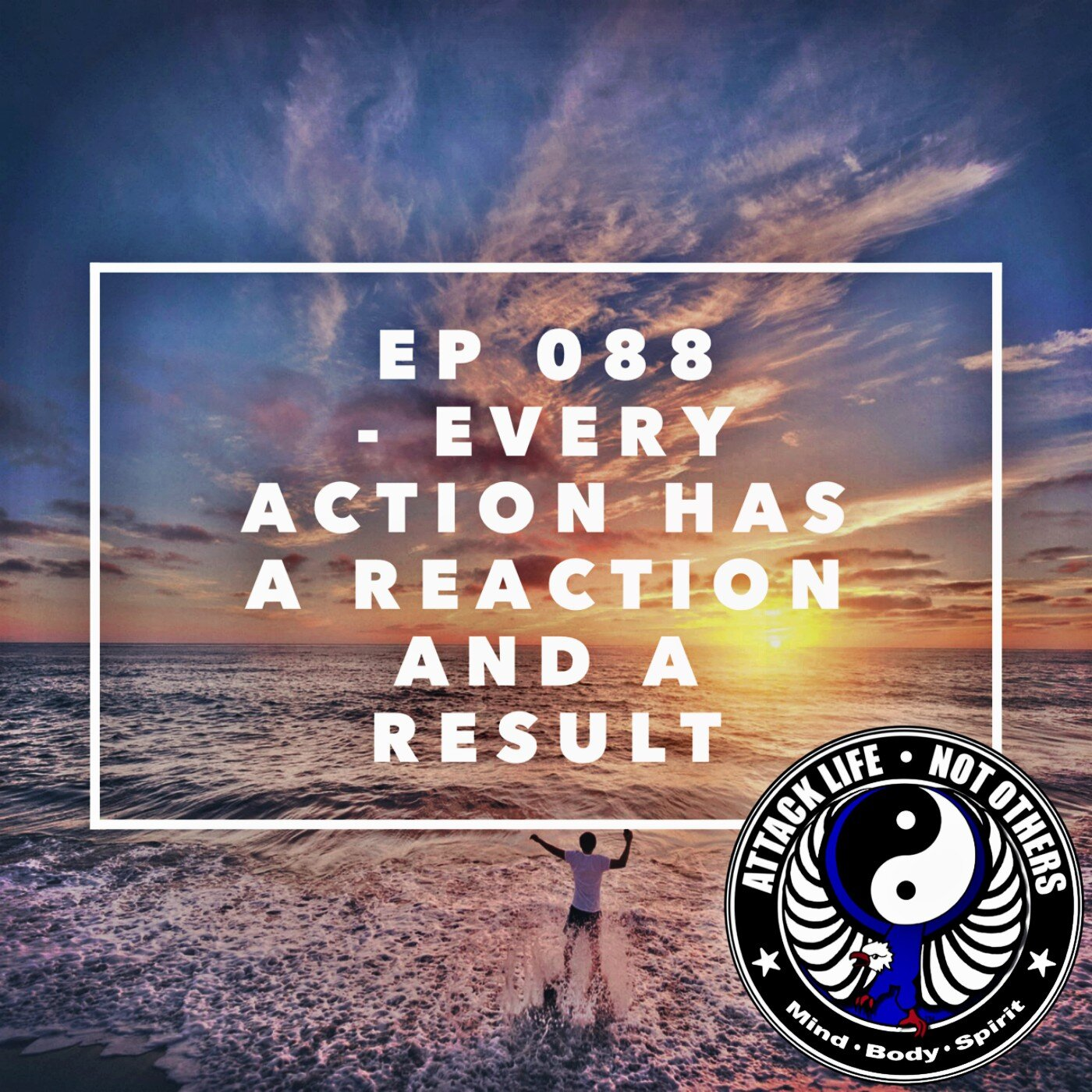 epEp 088 - Every Action Has a Reaction and a Result