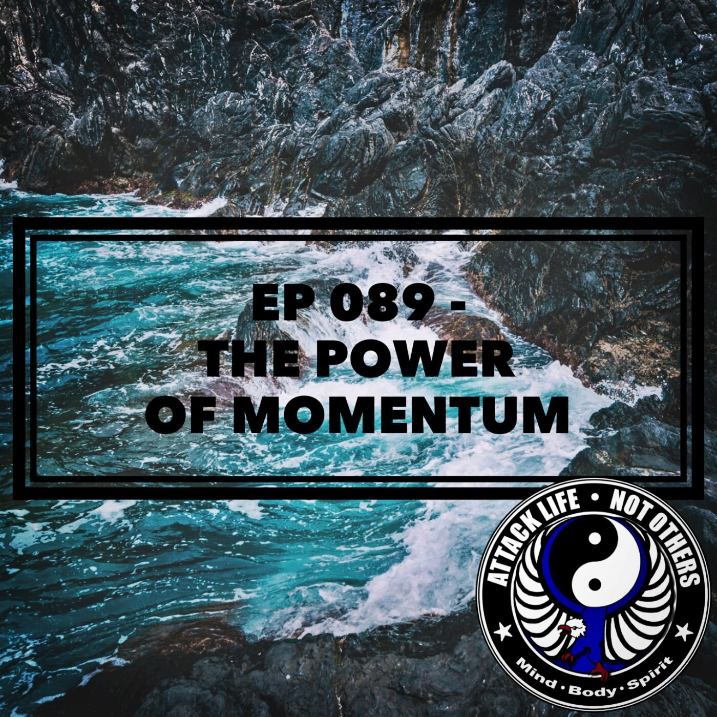 Ep 089 - The Power of Momentum