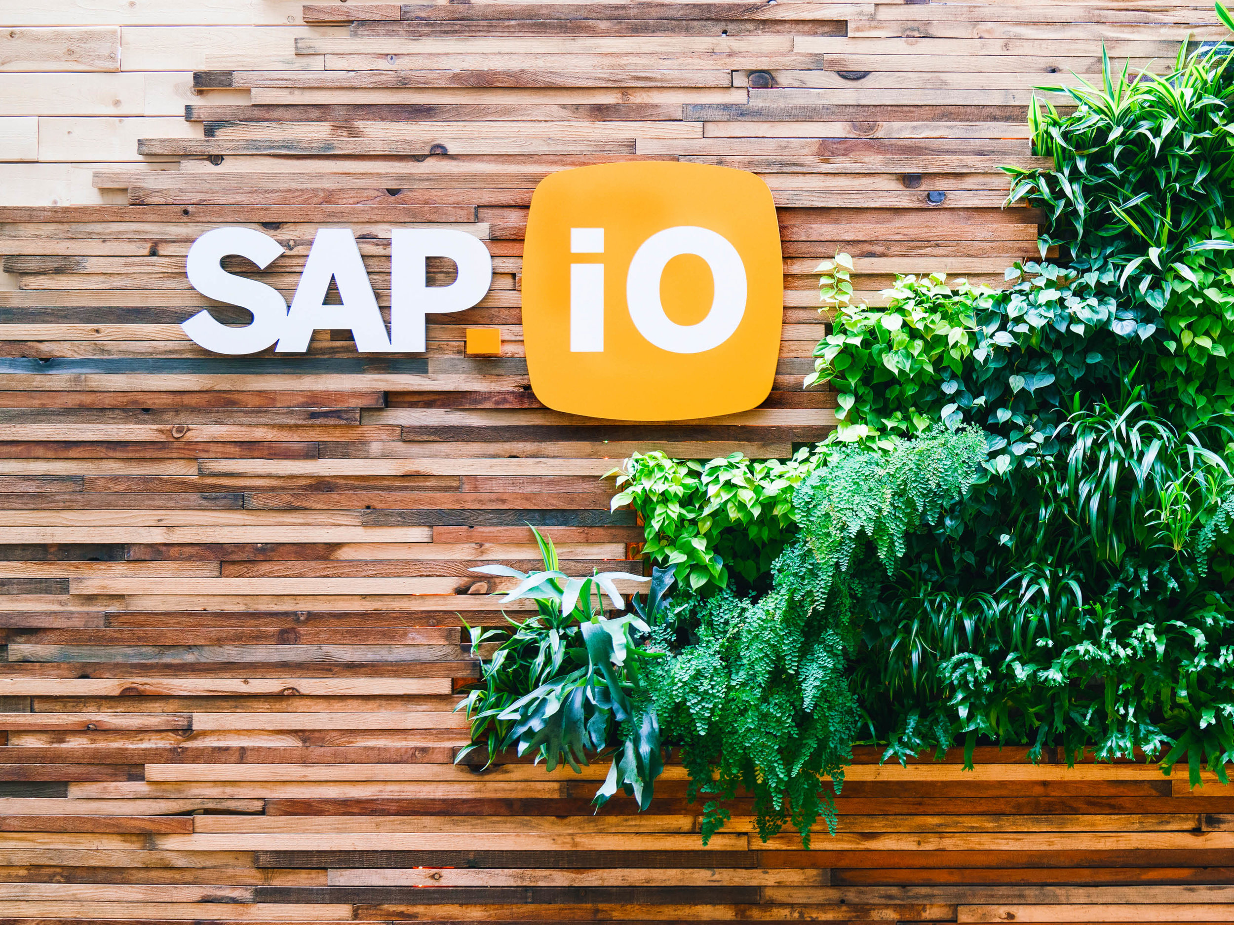 SAP.iO-PPT-Header-Images-Feb-2019-v142.jpg