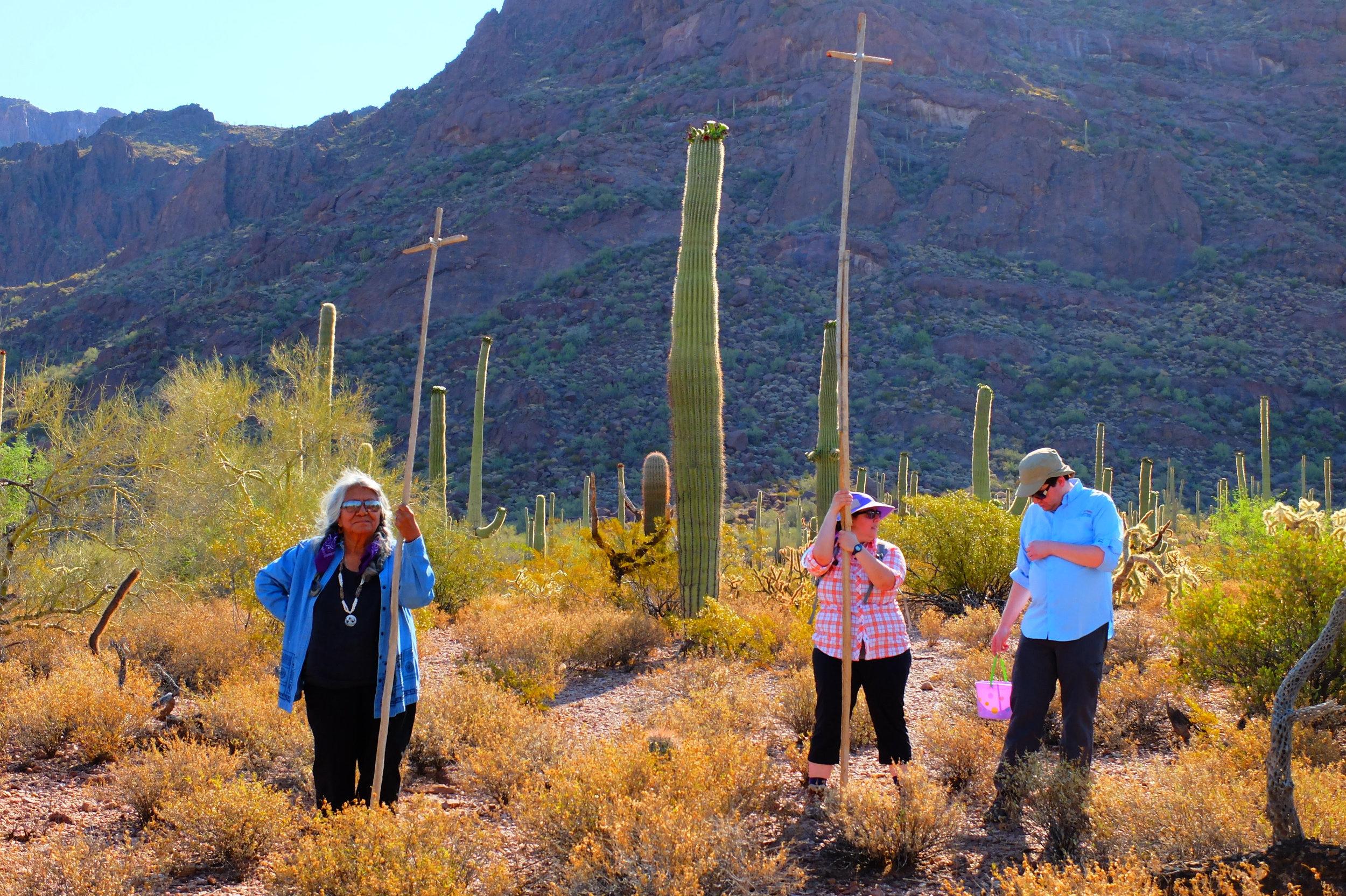 saguaroharvest.jpg