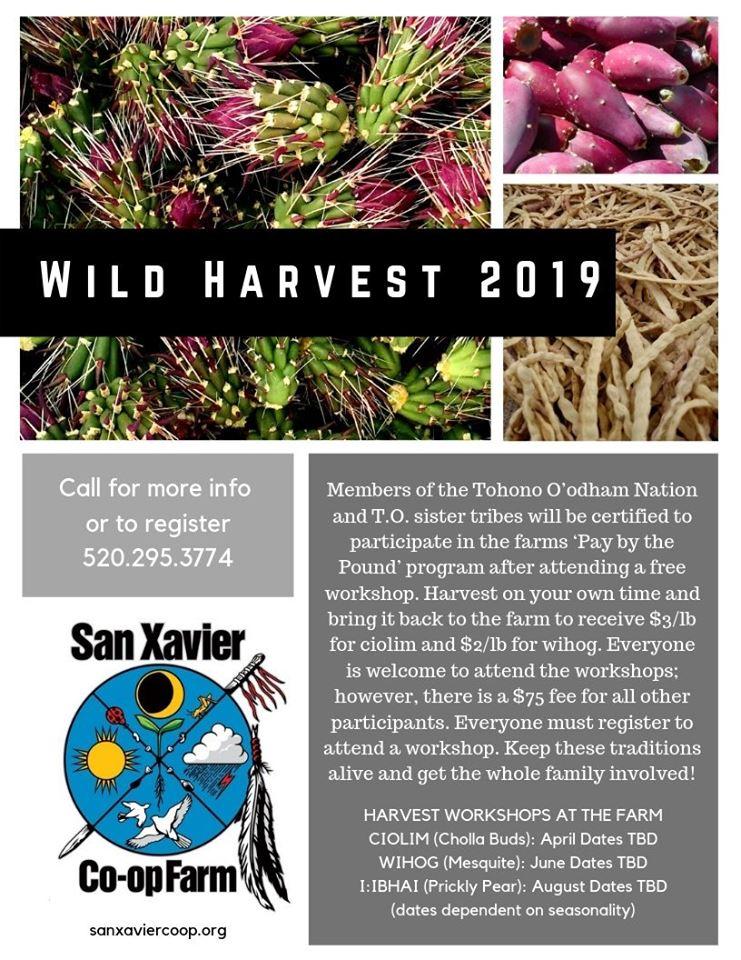 wildharvest.jpg