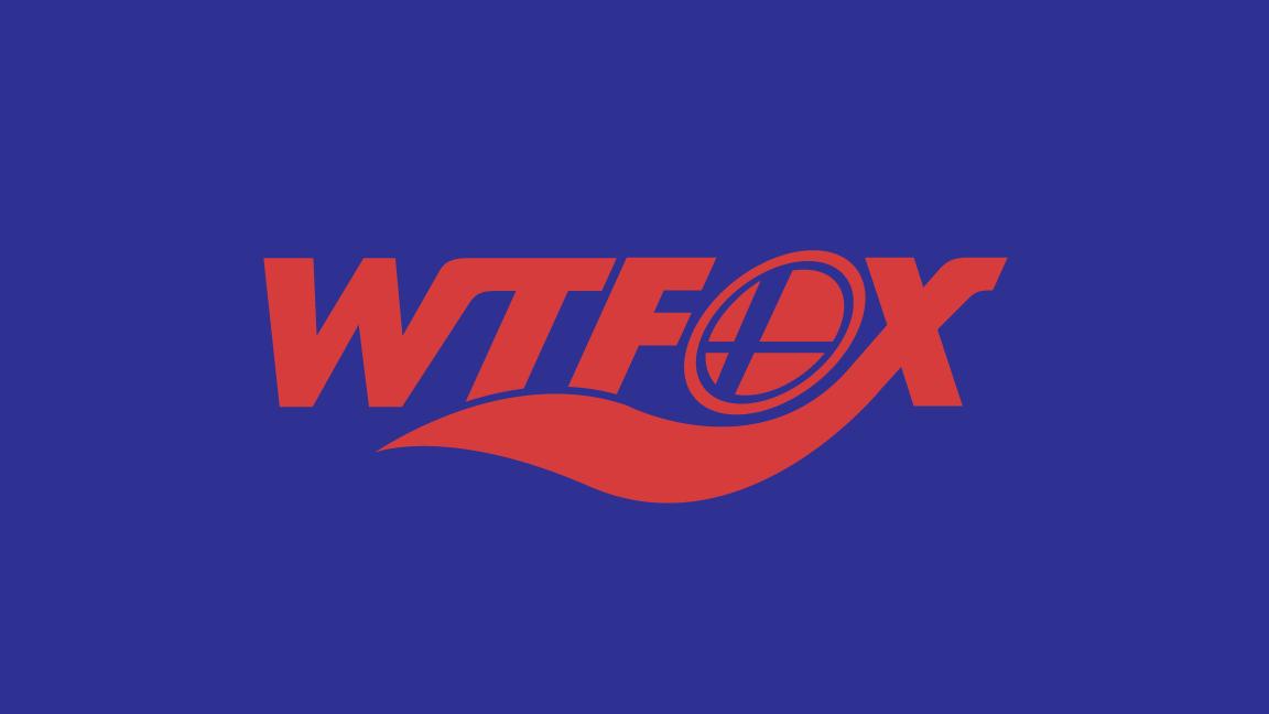 WTFox__Brand-Identity_Dreamcapture_Memphis-TN
