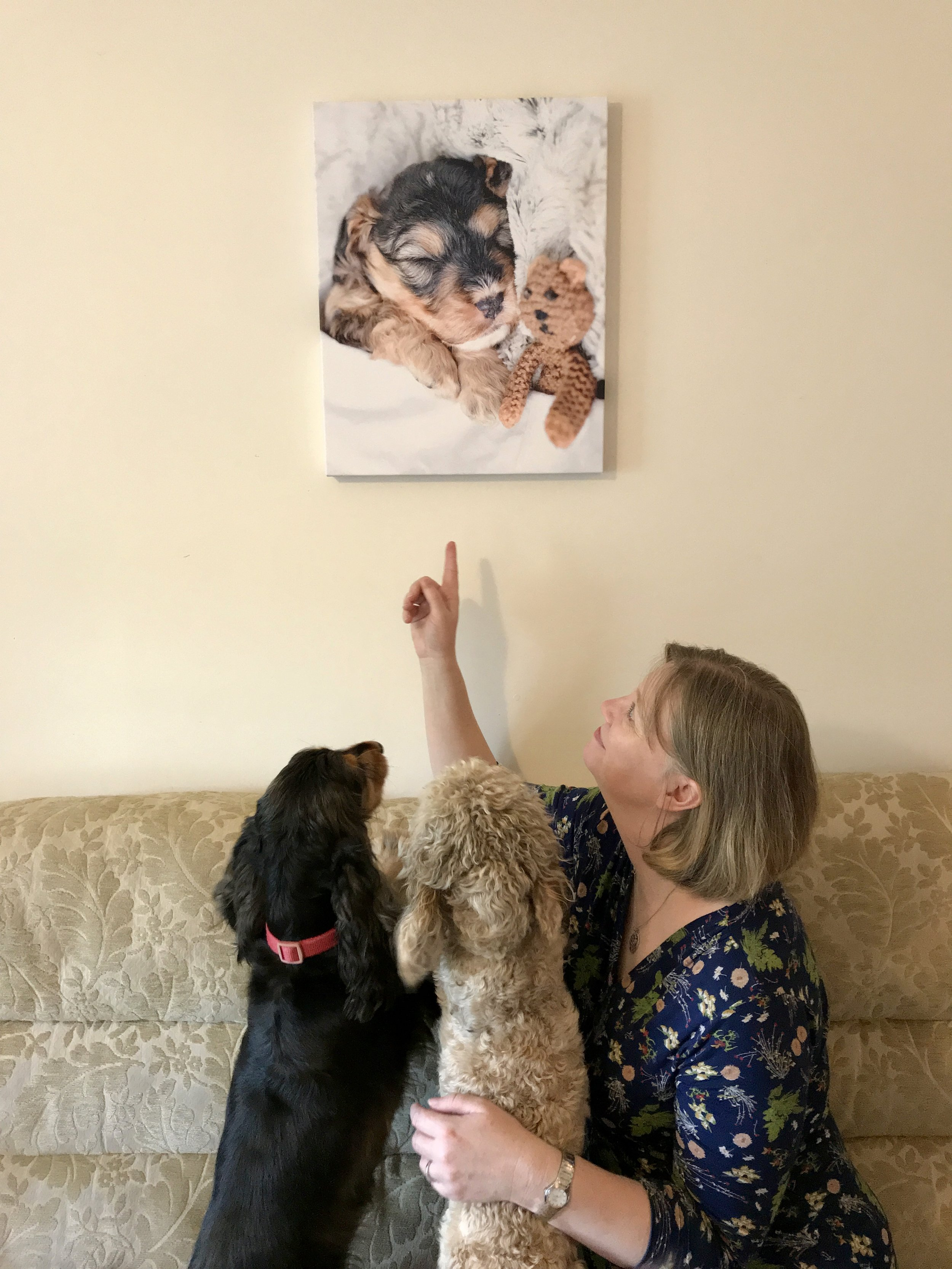 Grace, Jolene and Lydia admire Mark's handiwork - mounting the print on the wall using the mounting kit provided. Who's a good boy!