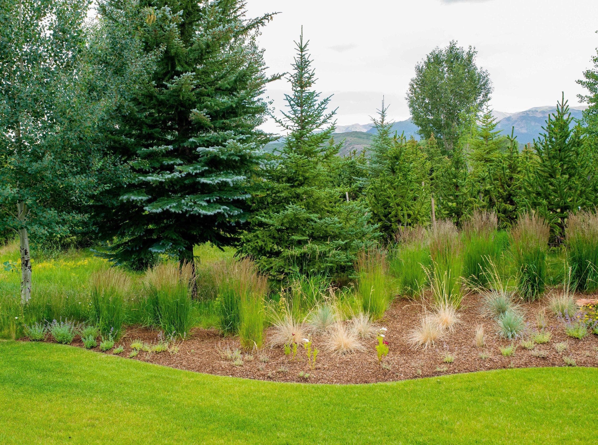 Aspen Landscaping