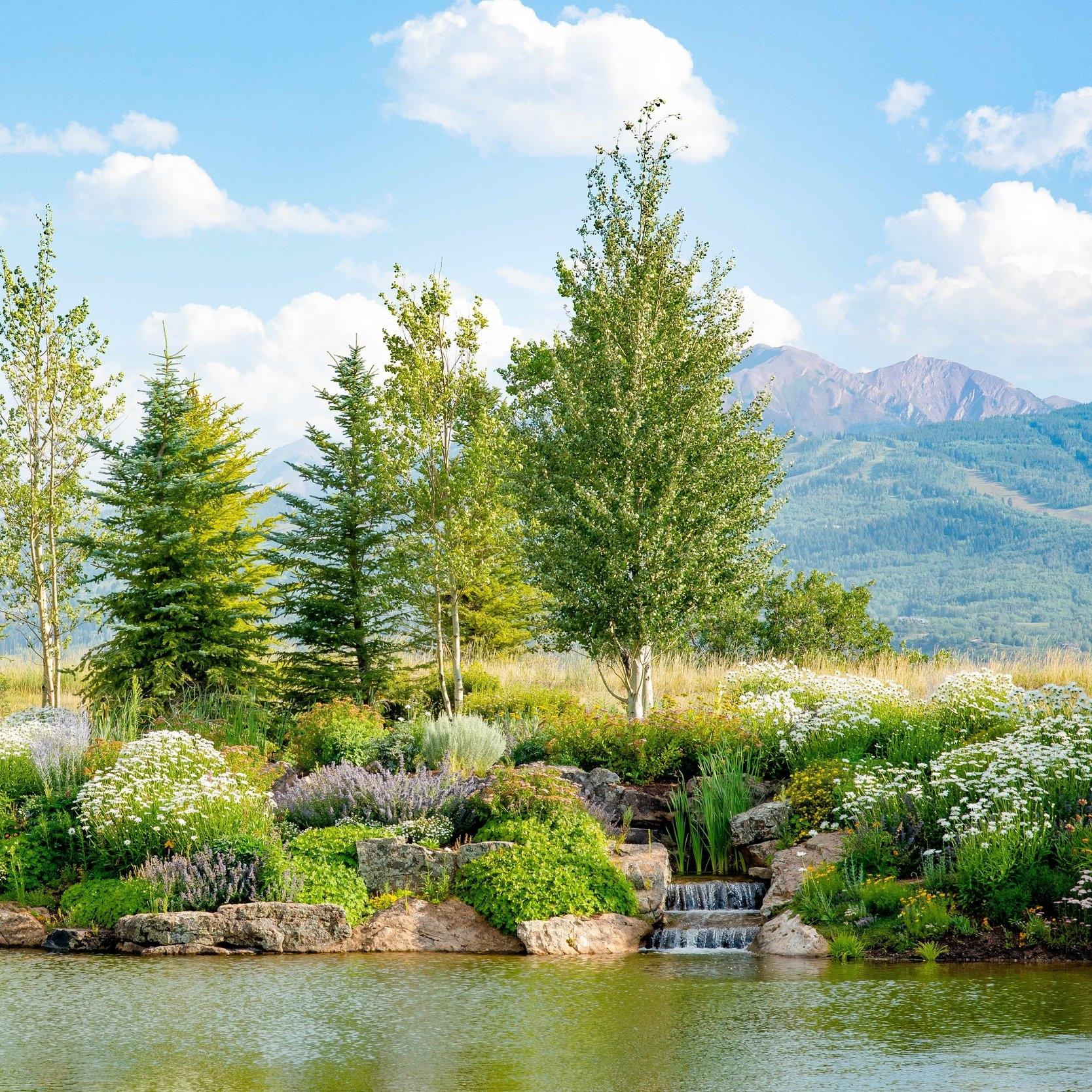 Aspen Waterscape