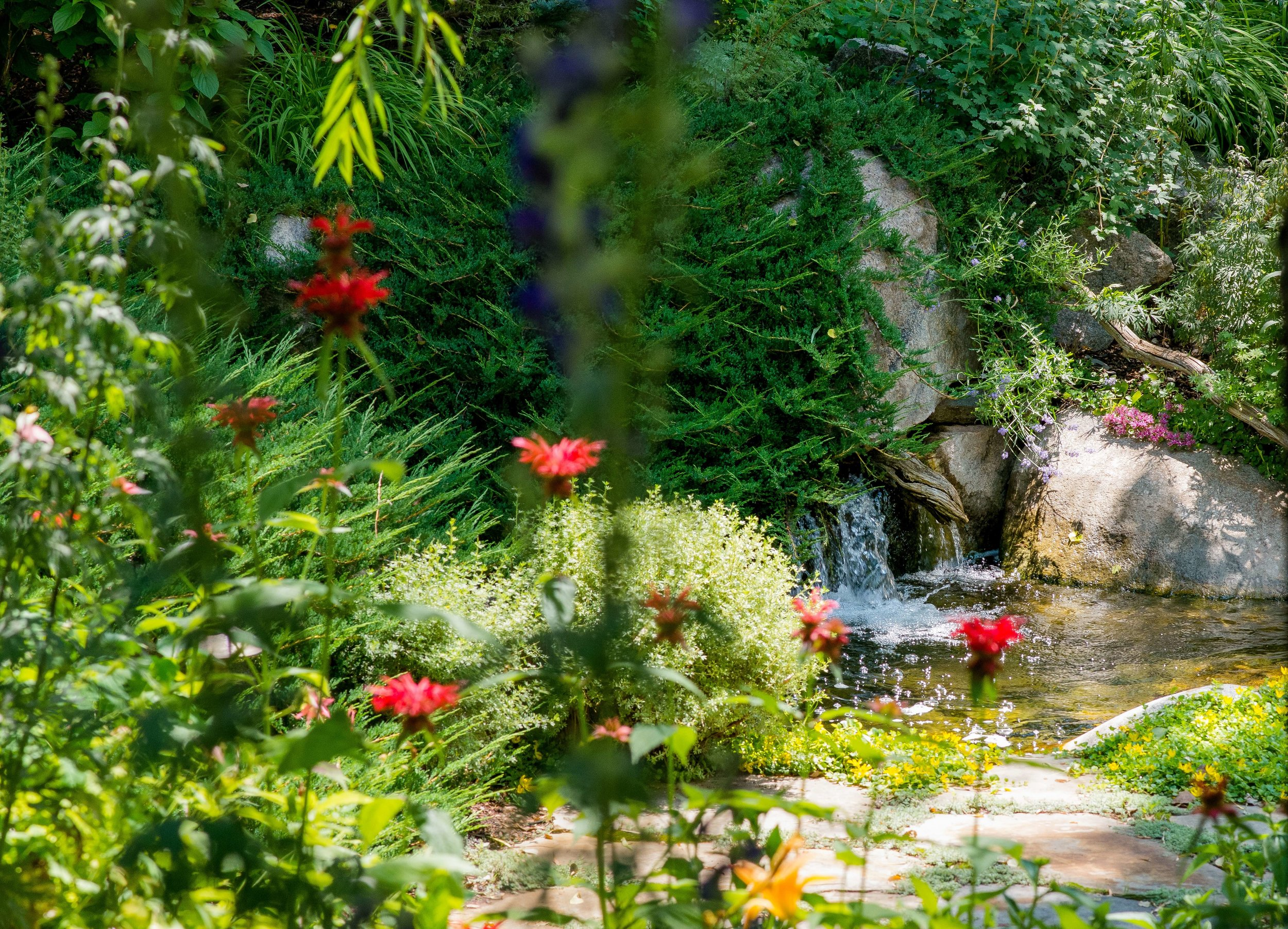 Aspen Luxury Garden Design