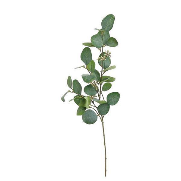 Faux Silver Dollar Eucalyptus