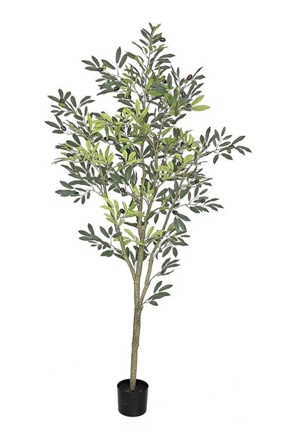 Faux Fruiting Olive Tree from Ottawa furniture store LD Shoppe by Leclair Decor