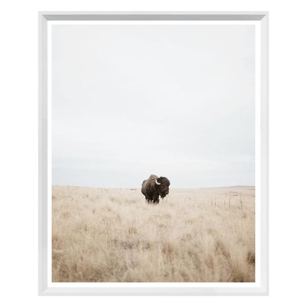 Great Plains White Framed Print