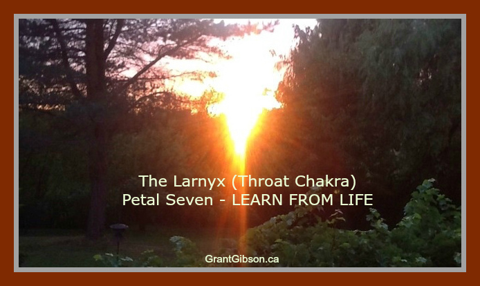 the-larnyx-throat-charkra-petal-7-learn-from-life.jpg