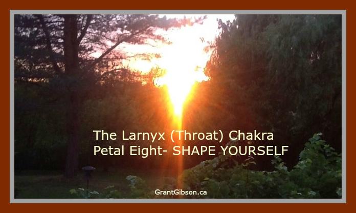 the-larnyx-throat-chakra-petal-8-shape-yourself.jpg