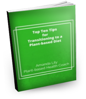 Top-Ten-Tips-for-Transitioning-to-a-Plant-based-Diet-3D-ebook-cover.png