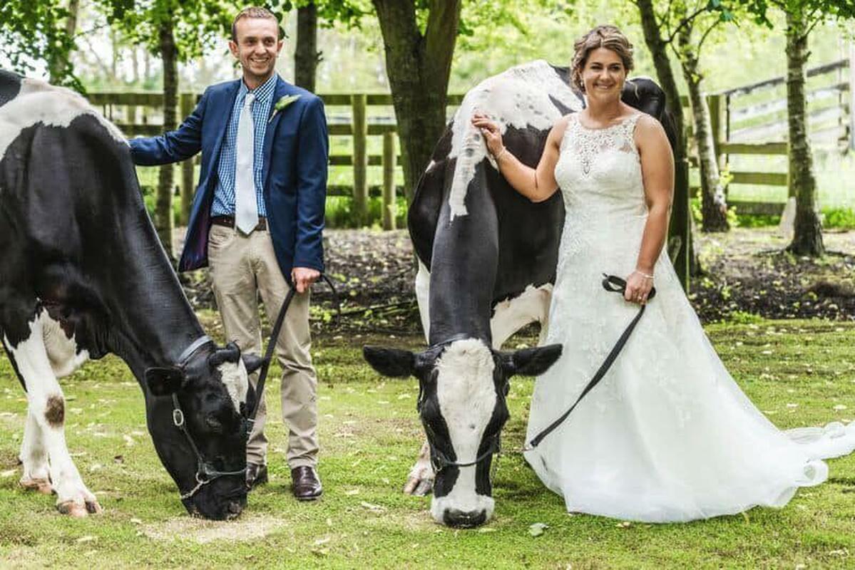 Farm Wedding 14 December 2018