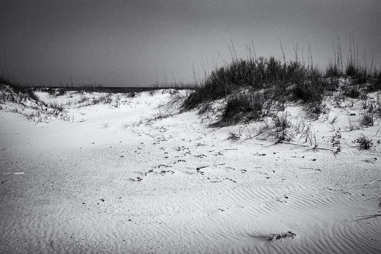 20170505_Beach_L1004598_2.jpg