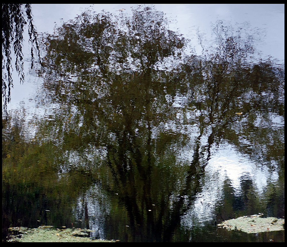 Mirror Landscape 1