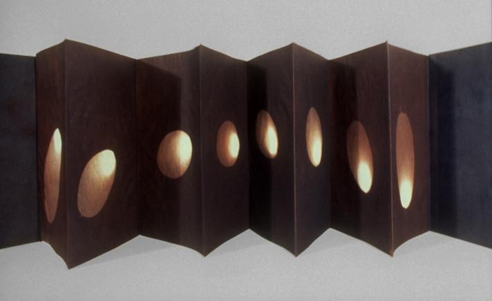 One Sun  concertina vandyke brown silver-sun prints