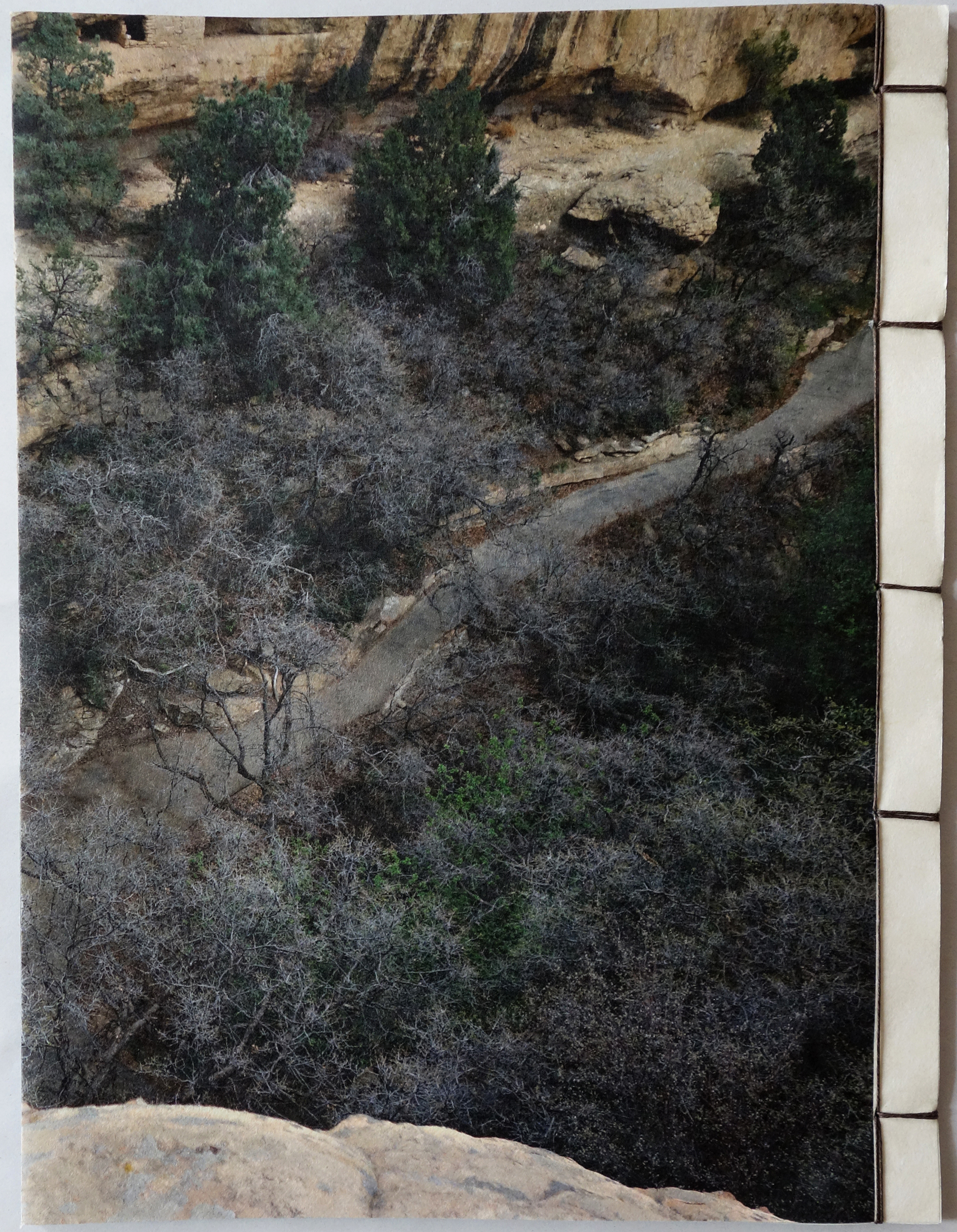 Mesa Verde Back Cover web.jpg