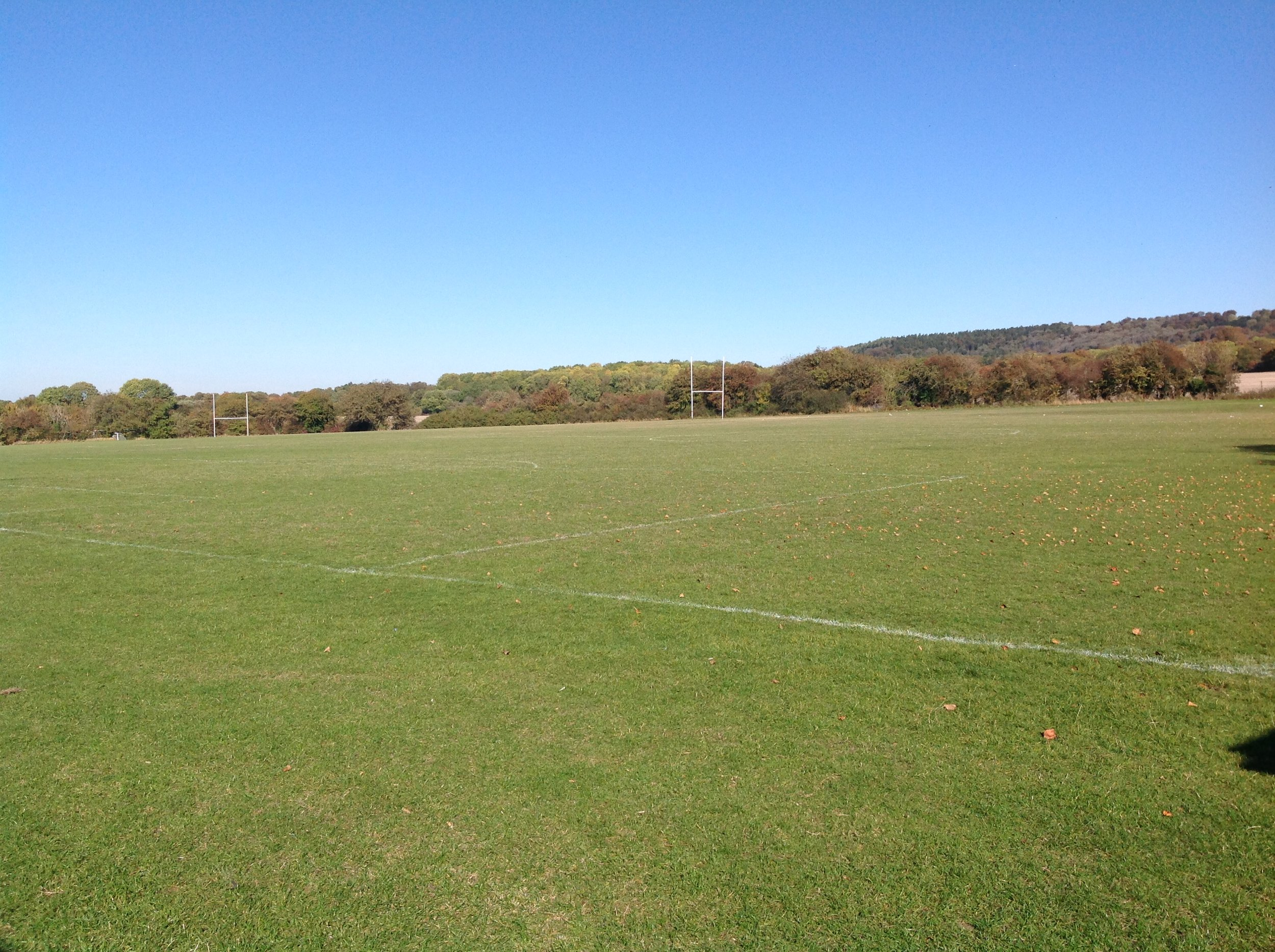 Front field.JPG