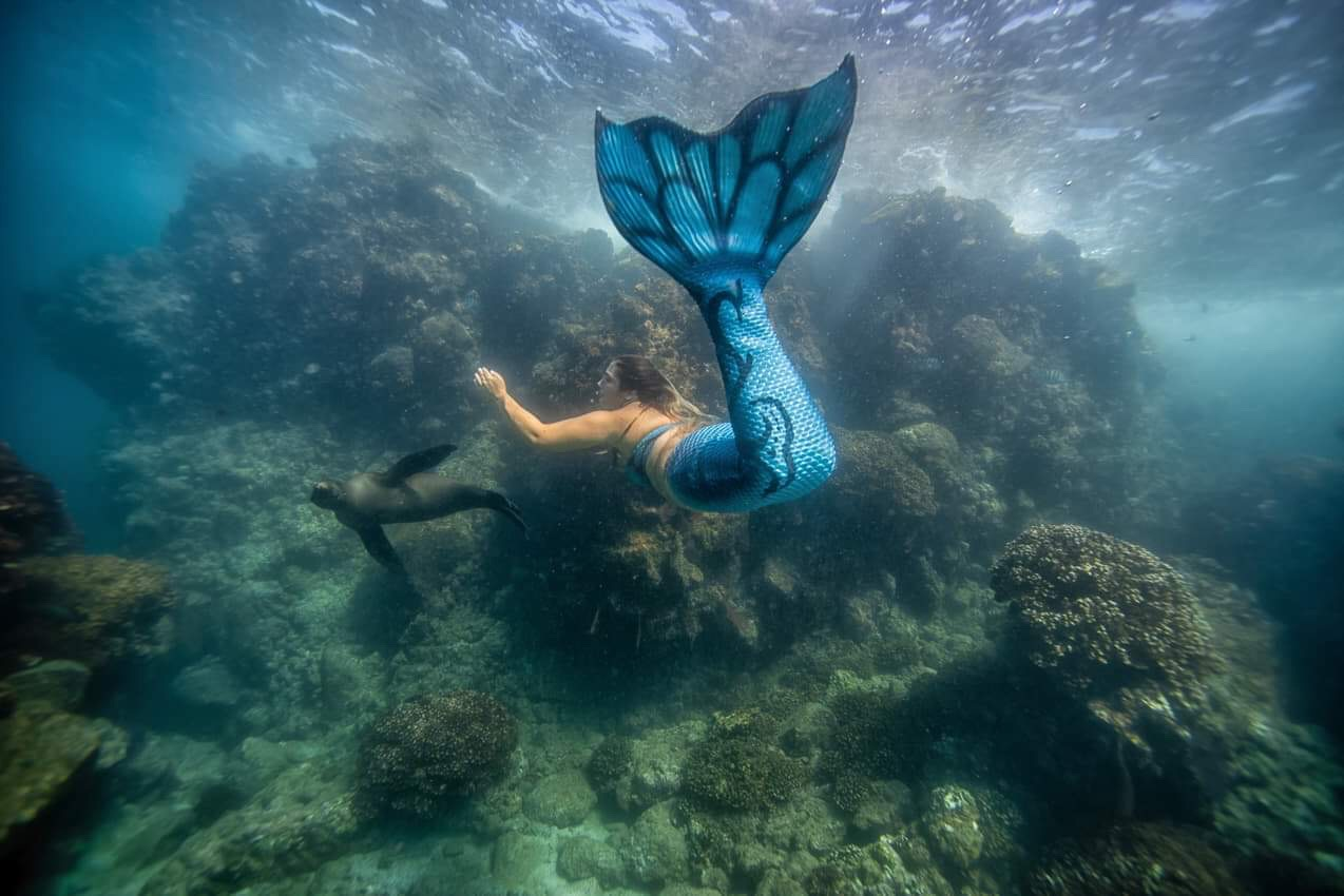Mermaid Lila swimming with a curious California Sea Lion in La Paz, Mexico. Photo by Cassie Pali ( @Casafras_h2o ).