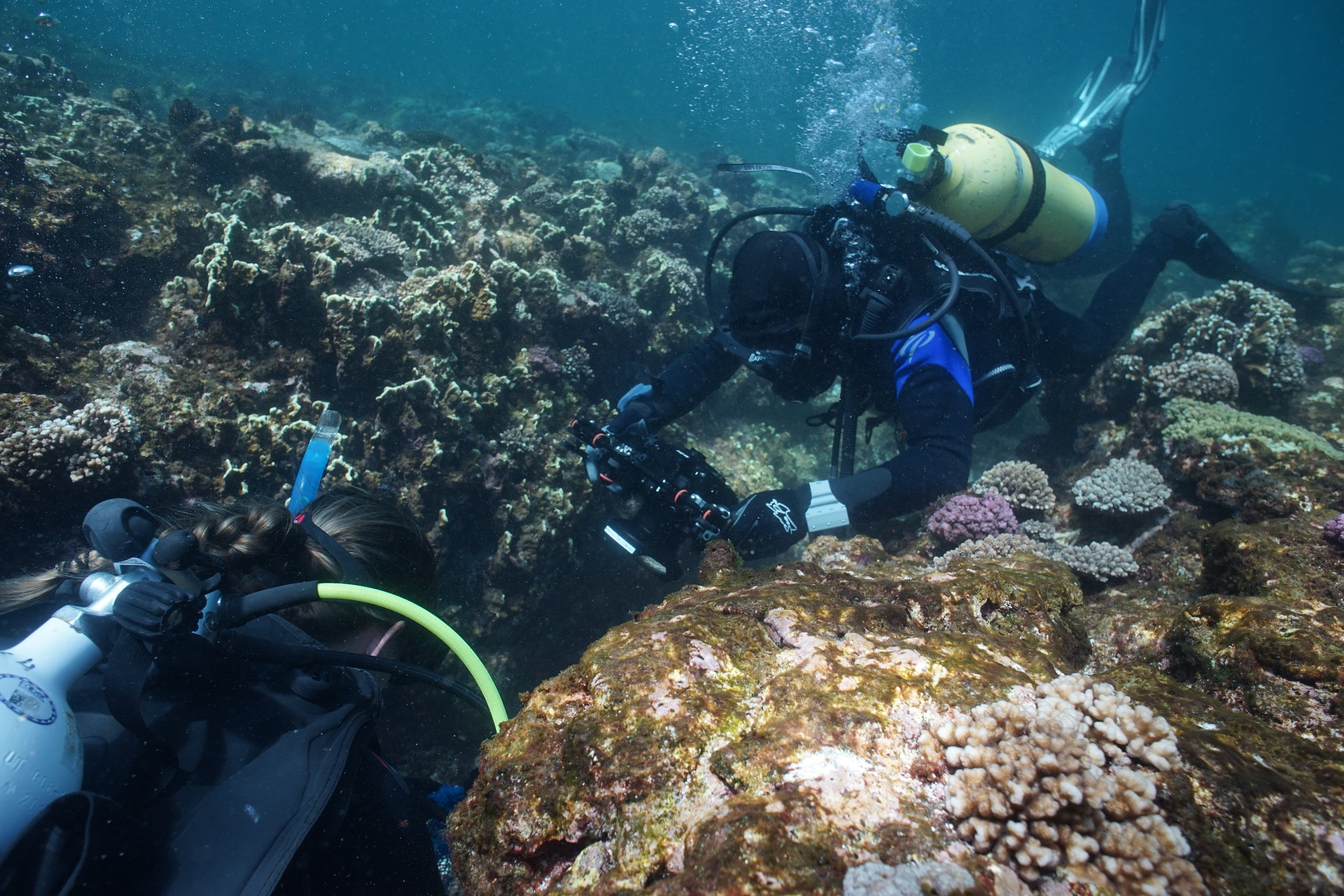 On a particular trip exploring the  Correio  shipwreck, Maddy and her team were filmed for a documentary about it. Photo WA Museum ( @wamuseum )