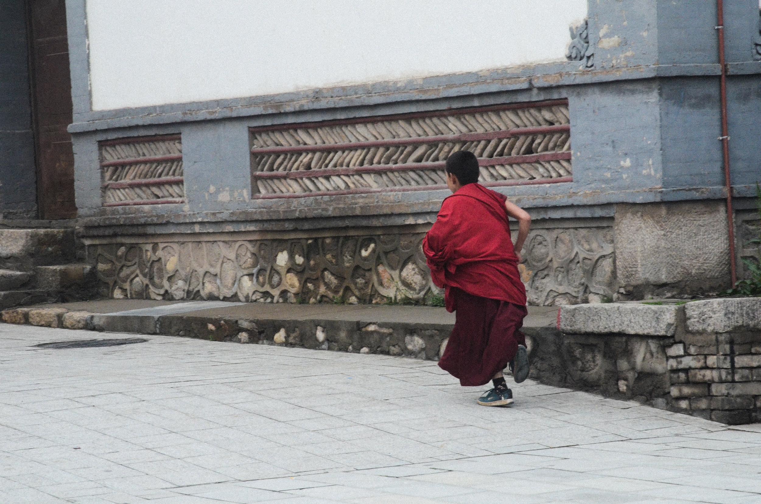 (Photography) Young Lama, Qinghai, China, 2015.