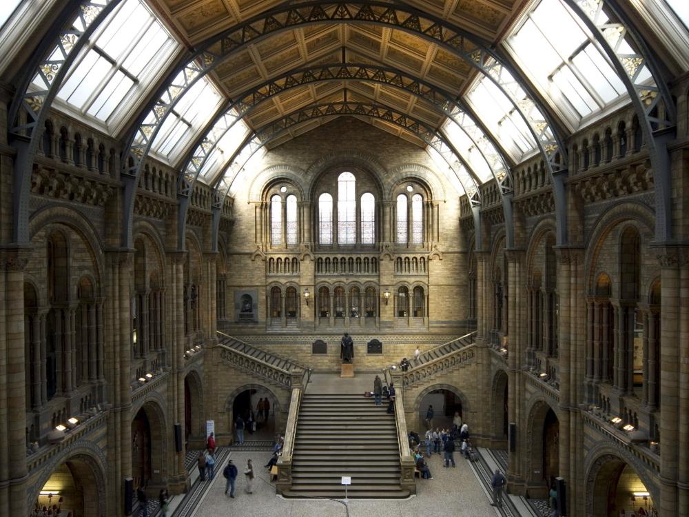 Eintrittspreise in London - Madame Tussauds = 25,00/30,00 GBPTower of London = 10,45/18,70 GBPTower-Bridge = 3,00/7,00 GBPSt. Pauls Cathedral = 4,50/12,50 GBPWestminster Abbey = 6,00/15,00 GBPRiesenrad London Eye = 11,25/18,90 GBPLondon Aquarium = 12,50/18,00 GBPLondon Zoo = 13,30/16,80 GBPLondon Dungeon = 17,00/23,00 GBPErwachsener ist man meistens schon ab 15/16 Jahren (Preise ohne Gewähr)