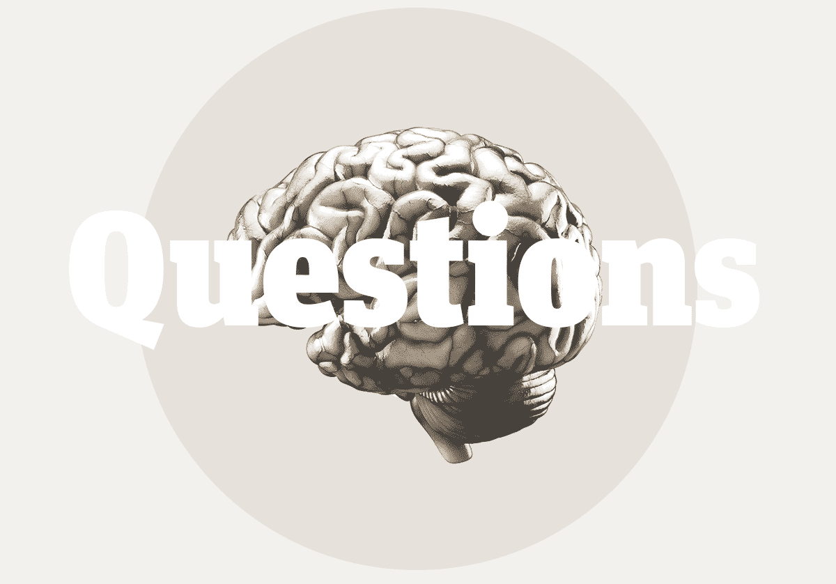 ApproachBrainQuestions.png